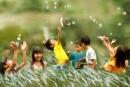Đáng tự hào cho những tấm lòng nhân đạo bao la giữa người với người  - Bài 2