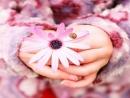 Nghị luận xã hội về lòng biết ơn - Ngữ Văn 12