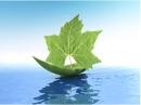 Đường lối của Đảng về bảo vệ môi trường