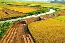 Cảm nhận về đoạn thơ Đất Nước của Nguyễn Khoa Điềm làm sáng tỏ nhận định - Ngữ Văn 12