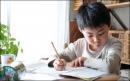 Đoạn văn nghị luận có yếu tố tự sự và miêu tả - Bài viết số 2