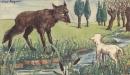 Soạn bài Chó sói và cừu