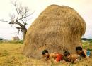 Soạn bài đọc thêm: Dọn về làng