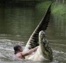 Soạn bài Bắt sấu rừng U Minh Hạ