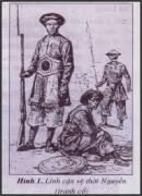 Quân đội của nhà Nguyễn được tổ chức như thế nào ?