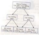 Vẽ sơ đồ nhà nước thời An Dương Vương.