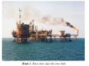 Dầu khí khai thác ở nước ta được dùng để làm gì ?