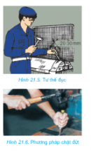 Câu 2 trang 73 SGK Công Nghệ 8