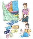 Bài ôn tập Chương I trang 32 SGK Công nghệ 6