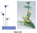 Bài thực hành: Cắm hoa dạng thẳng đứng trang 57 SGK Công nghệ 6