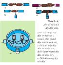 Thực hành bài 5 trang 23 SGK Công Nghệ 9 - Lắp đặt mạng điện trong nhà