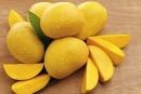 Câu 2 trang 53 SGK Công Nghệ 9 - Trồng cây ăn quả