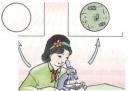 Bằng kính hiển vi, có thể nhìn thấy gì trong một giọt nước hồ, ao?