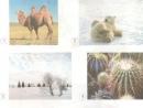 Kể tên một số cây hoặc con vật có thể sống ở xứ lạnh hoặc xứ nóng mà bạn biết