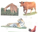 Nói tên những động vật ăn cỏ, lá cây, quả,.. và những động vật ăn thịt, ăn sâu bọ,...