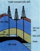 Đọc các thông tin dưới đây và nêu tên một số chất có thể được lấy ra từ dầu mỏ