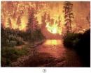 Tại sao lũ lụt hay xảy ra khi rừng đầu nguồn bị phá huỷ ?