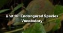 Vocabulary - Phần từ vựng - Unit 10 Tiếng Anh 12