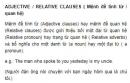 ADJECTIVE / RELATIVE CLAUSES ( Mệnh đề tính từ / quan hệ) Unit 8 SGK Tiếng Anh 9