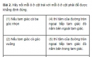 Bài 2 trang 100 SGK Toán 9 tập 1