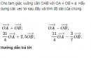Bài 21 trang 23 Sách giáo khoa (SGK) Hình học 10 Nâng cao