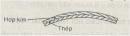 Bài  2 trang 258 SGK Vật lý lớp 10 Nâng cao
