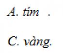 Câu 2 trang 244 SGK Vật Lý 12 Nâng cao