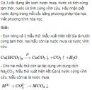 Bài 10 trang 168 SGK Hóa học lớp 12 nâng cao