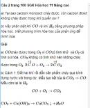 Câu 2 trang 100 SGK Hóa học 11 Nâng cao