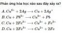 Bài 1 trang 213 SGK hóa học 12 nâng cao