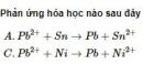 Bài 1 trang 218 SGK hóa học 12 nâng cao