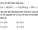 Bài 2 trang 213 SGK hóa học 12 nâng cao
