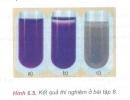 Câu 8 trang 165 SGK Hóa học 11 Nâng cao