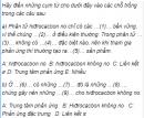 Câu 1 trang 207 SGK Hóa học 11 Nâng cao