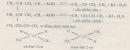 Câu 4 trang 219 SGK Hóa học 11 Nâng cao