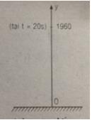 Câu 27 trang 206 SGK Đại số và Giải tích 11 Nâng cao