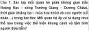 Soạn bài Tại lầu Hoàng Hạc tiễn Mạnh Hạo Nhiên đi Quảng Lăng - Ngắn gọn nhất