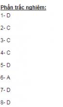 Soạn bài Kiểm tra tổng hợp cuối học kì I - Ngữ văn 11 - Ngắn gọn nhất