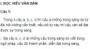 Soạn bài  Giữ gìn sự trong sáng cho Tiếng Việt (tiếp theo) - Ngắn gọn nhất