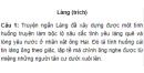 Soạn bài Làng (trích) (ngắn gọn) - Kim Lân