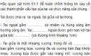 Câu hỏi thảo luận số 1 trang 162 SGK Sinh 8