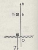 Câu C1 trang 173 SGK Vật lý lớp 10 nâng cao