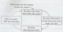 Câu 5 trang 83 SGK Sinh học 11 Nâng cao