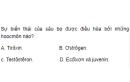 Câu 4 trang 148 SGK Sinh học 11 Nâng cao