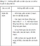 Câu 1 trang 123 SGK Sinh học 12 nâng cao
