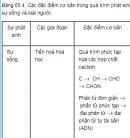 Câu 4 trang 268 SGK Sinh học 12 nâng cao