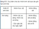 Câu 5 trang 268 SGK Sinh học 12 nâng cao