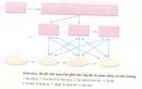 Câu 9 trang 270 SGK Sinh học 12 nâng cao
