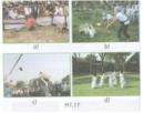 Bài 8 trang 10 sách Tài liệu Dạy – Học Vật lí 7