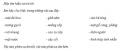 Hoạt động 4 trang 92 sách Tài liệu Dạy – Học Vật lí 7